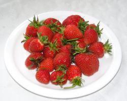 Erdbeeren, Bayern